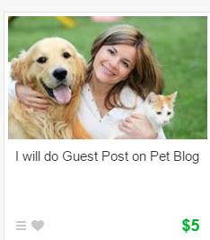 Fiverr Guest Post