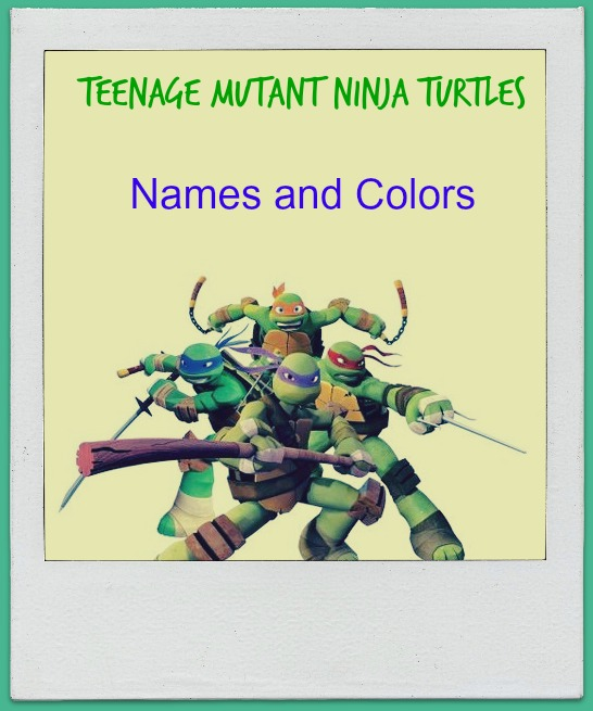 Teenage Mutant Ninja Turtle S Names Blue Purple Red Orange Online Fanatic