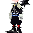Halloween Sora Costume