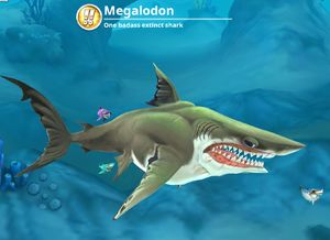 Megalodon Max